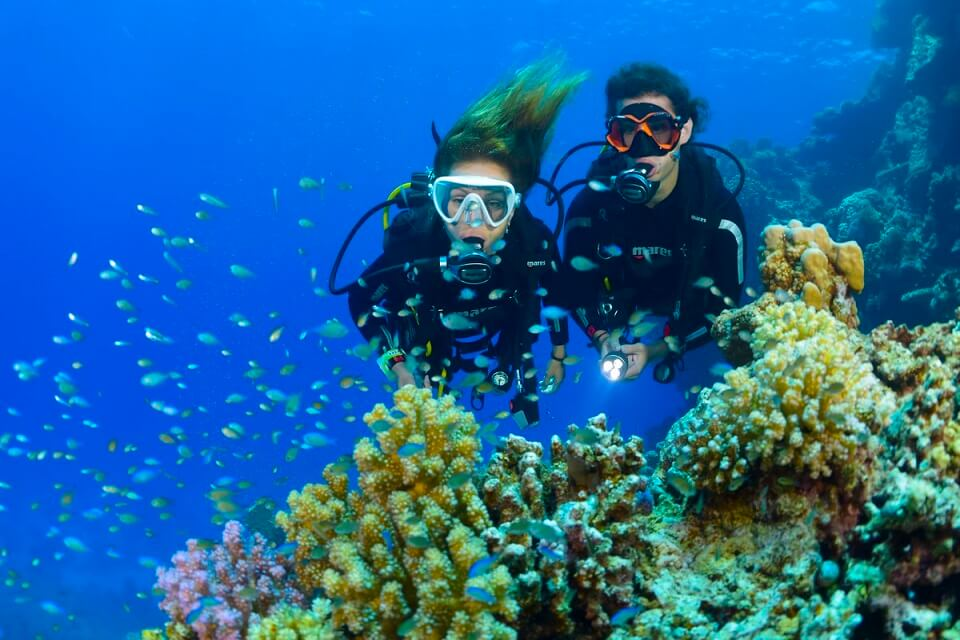 diving license malaysia